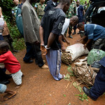 UNMIL Photo/Christopher Herwig,  October 6, 2008, Gbanga, Liberia - While the team is preparing to start the trek into the bush a car appears carrying 7 passengers and four sacks of vegetabl ...