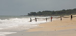 ARKIV 060809 - Teamwork as the village works together to bring the nets in.  Beaches around the village of Sussex on the Freetown Peninsula. Sussex, Freetown Peninsula, Sierra Leone Foto: Ch ...